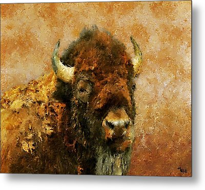 King Of The Plains Metal Print by Roger D Hale