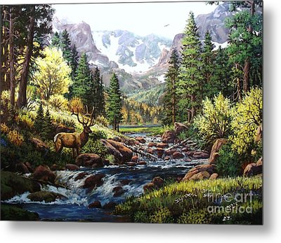 King Of The Valley Metal Print by W  Scott Fenton
