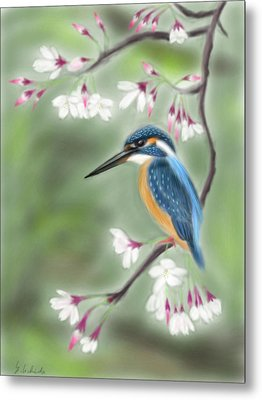 Kingfisher 19 Metal Print