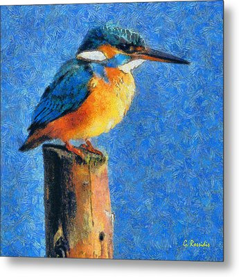 Kingfisher The King Metal Print by George Rossidis