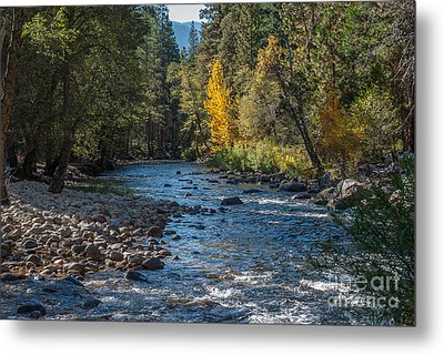 Kings River 1-7813 Metal Print