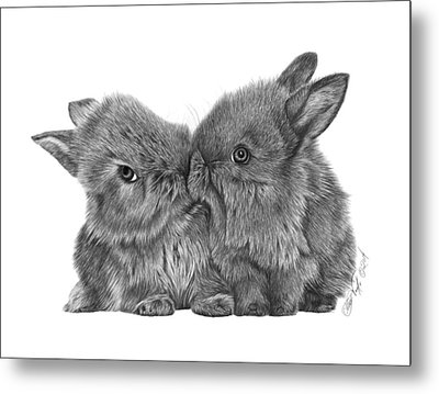 Metal Print featuring the drawing Kissing Bunnies - 035 by Abbey Noelle
