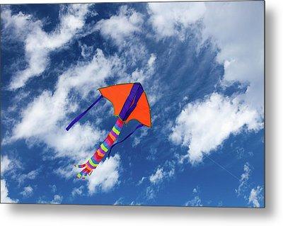 Kite Flying In Sky Metal Print