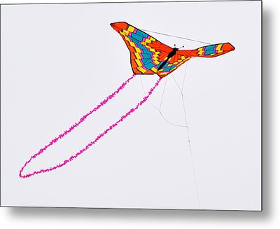 Kite With Pink Tail Metal Print by Michael Bruce