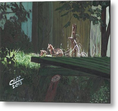 Kits In The Sun Metal Print by Cliff Wilson