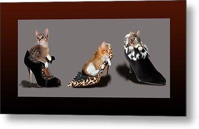 Kittens In Designer Ladies Shoes Metal Print