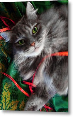 Kitty Christmas Card Metal Print