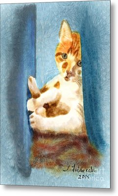 Kitty In A Corner Metal Print by Judy Filarecki