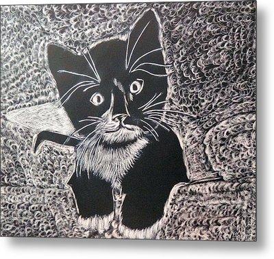 Kitty In Blanket Metal Print by Lisa Brandel