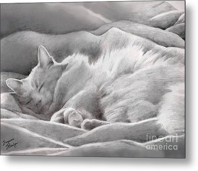Kitty In The Covers Metal Print by Suzanne Schaefer