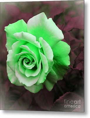 Kiwi Lime Rose Metal Print by Barbara Griffin