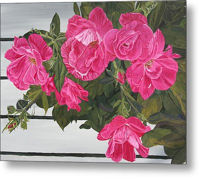 Metal Print featuring the painting Knock Out Roses by Wendy Shoults