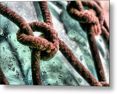 Knoticle Metal Print by JC Findley