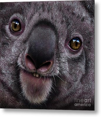 Koala Metal Print by Jurek Zamoyski