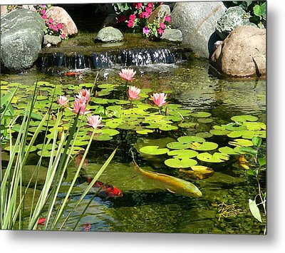 Koi Pond Metal Print by Doug Kreuger