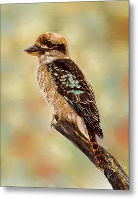 Kookaburra - Australian Bird Painting Metal Print