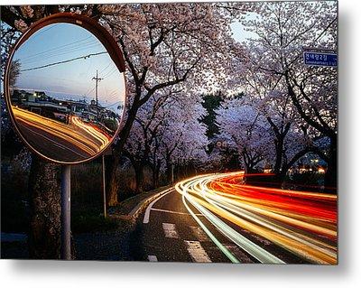 Korea's Roadside Blossoms Metal Print