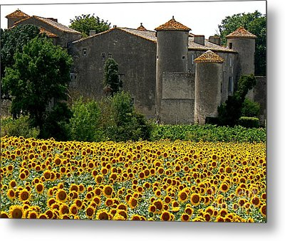 La Vie Est Belle Metal Print by France  Art