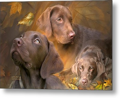 Lab In Autumn Metal Print
