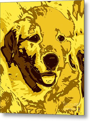 Labrador Metal Print by Chris Butler