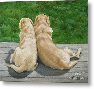 Labrador Lazy Afternoon Metal Print