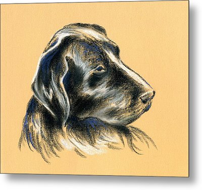 Metal Print featuring the pastel Labrador Retriever - Black Dog Pastel Drawing by MM Anderson