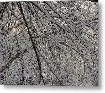 Metal Print featuring the photograph Lace by Winifred Butler