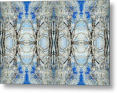 Metal Print featuring the photograph Lacy Winter Trees Abstract Art Photo by Marianne Dow
