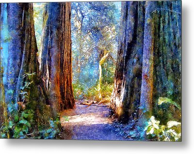Lady Bird Johnson Grove Metal Print by Kaylee Mason