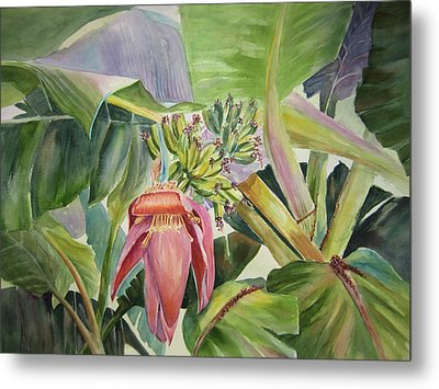 Metal Print featuring the painting Lady Fingers - Banana Tree by Roxanne Tobaison