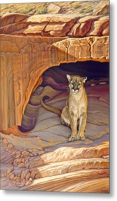 Lady Of The Canyon Metal Print by Paul Krapf