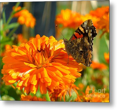 Lady On Orange Metal Print by Heidi Manly