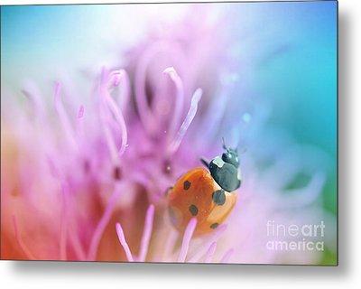 Ladybug Metal Print by Martin Capek