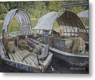 Metal Print featuring the photograph Ladys Slipper 2 by Pete Hellmann
