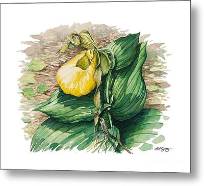 Metal Print featuring the painting Ladyslipper by Bob  George