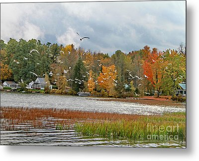 Lake Carmi Autumn 2012 Metal Print by Deborah Benoit