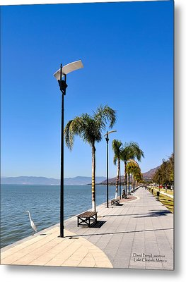 Metal Print featuring the photograph Lake Chapala - Mexico by David Perry Lawrence