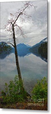 Lake Crescent - Washington - 01 Metal Print by Gregory Dyer