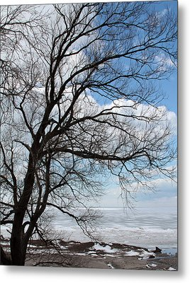 Metal Print featuring the photograph Lake Erie In March by John Freidenberg