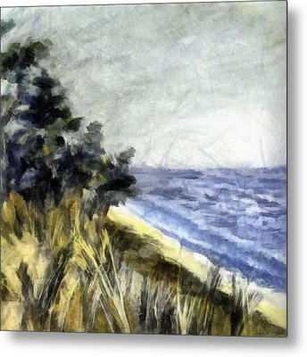 Lake From The Dunes Metal Print by Michelle Calkins