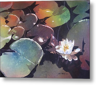 Lake Garden Metal Print by Kris Parins