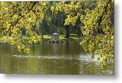 Lake In Boston Park Metal Print by Alex King