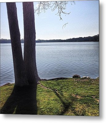 Lake In The Summer Metal Print by Christy Beckwith