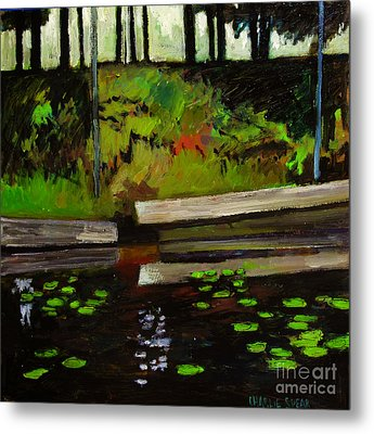 Lake In The Woods Metal Print by Charlie Spear