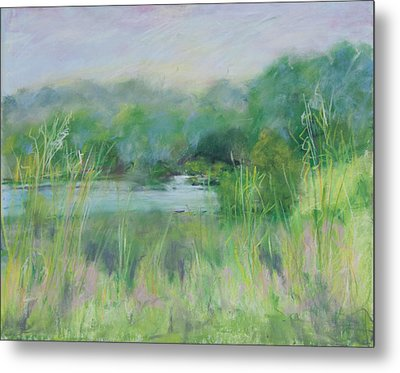 Lake Isaac Impressions Metal Print by Lee Beuther