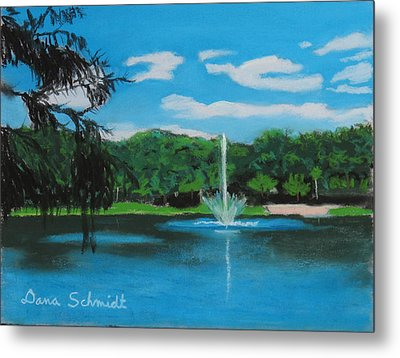 Lake Lilly In Maitland Metal Print