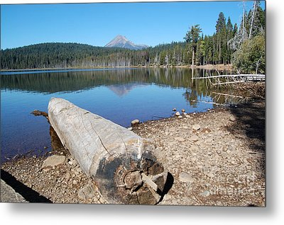 Metal Print featuring the photograph Lake Of The Woods 3 by Debra Thompson
