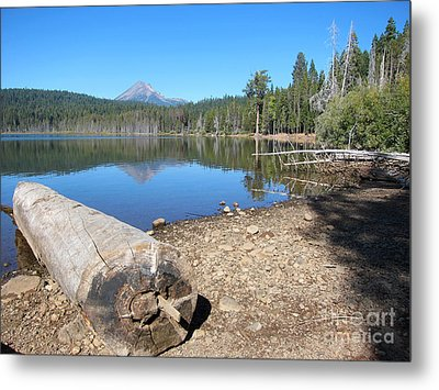 Metal Print featuring the photograph Lake Of The Woods 5 by Debra Thompson