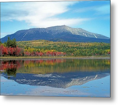 Metal Print featuring the photograph Lake Reflection by Gene Cyr