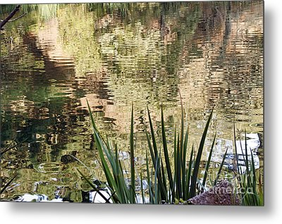 Metal Print featuring the photograph Lake Reflections by Kate Brown